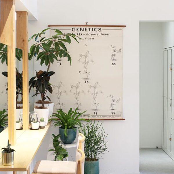 美容室をインテリアコーディネート